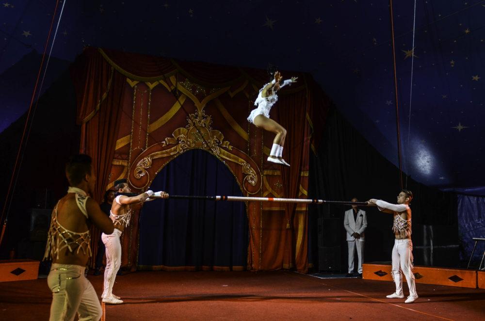 Gandeys circus aintree
